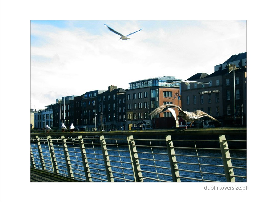 Dublin Photo - Video z dublina